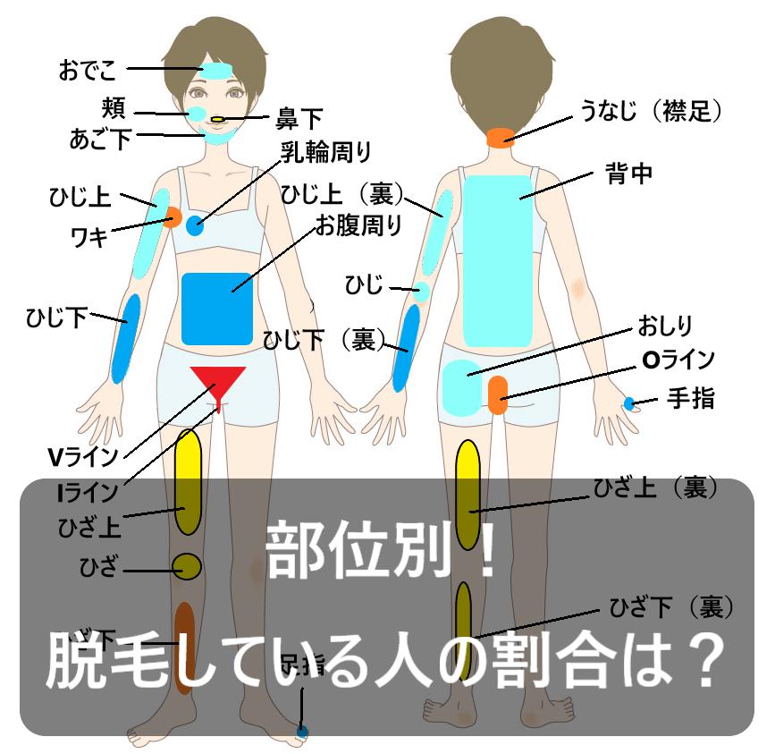 女性の部位を表した画像に「部位別!脱毛している人の割合は?」と書かれている画像