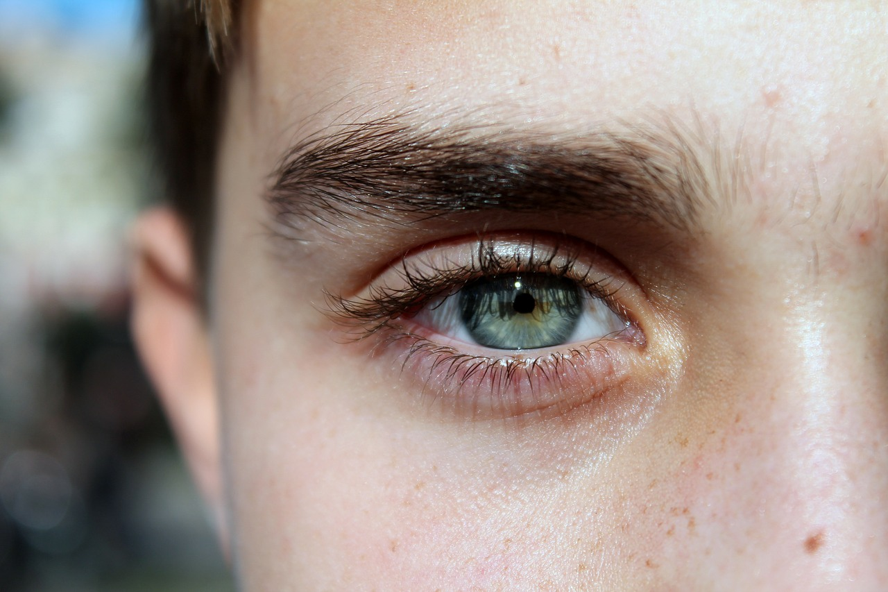 眉毛の濃さを比較するモデル